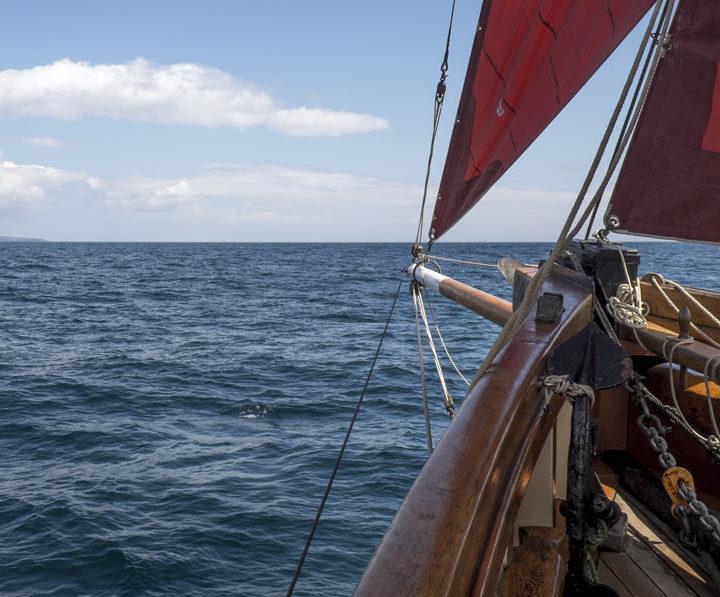 Morning Brixham Trawler Cruise