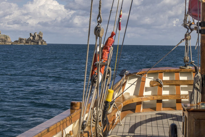 Day Sail on Pilgrim