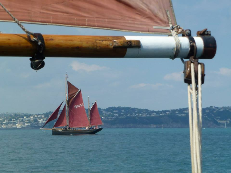 Afternoon Day Sail in Torbay