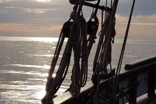 Morning Devon Sailing Cruise